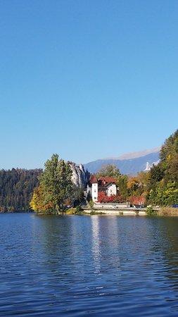 Bled Island: DSC_9358_large.jpg