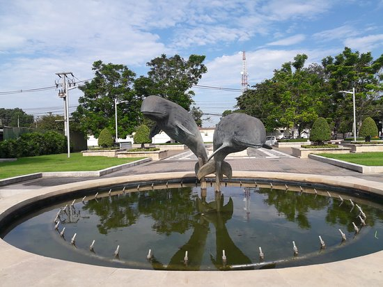 Chachoengsao Province, Thailand: Dolphins