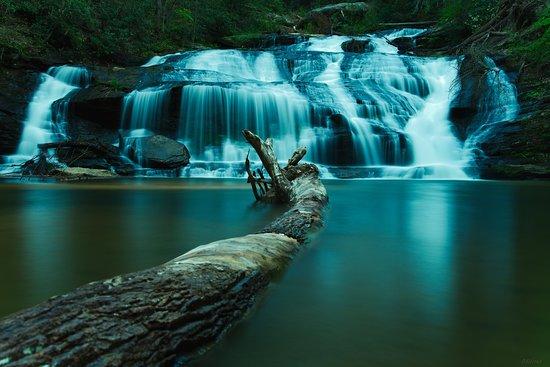 Tallulah Falls, GA: Fallen log added beauty to the falls