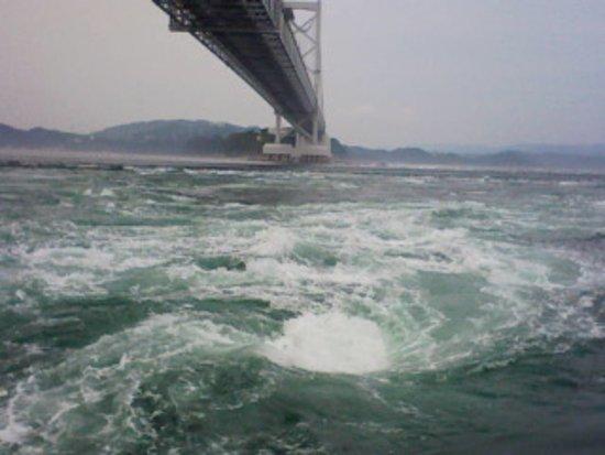 うずしお汽船, 大鳴門橋下で巻く引き潮のうずしお!