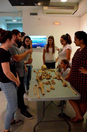 Vid, Kroasia: Anthropological analysis workshop