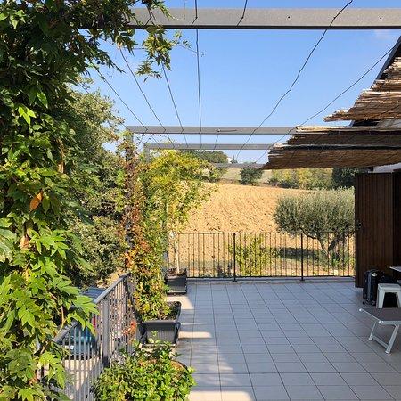 Morrovalle, Italia: photo1.jpg