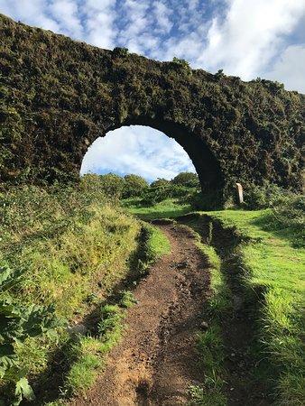 Green Visions Tours (Ponta Delgada) - 2019 O que saber antes de ir ... c8a8cda695c26