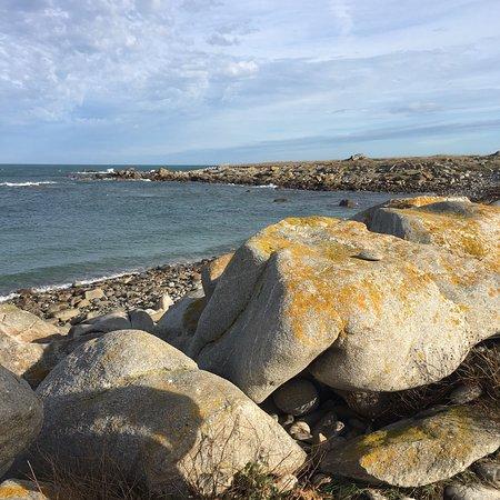 Ile de Batz 사진