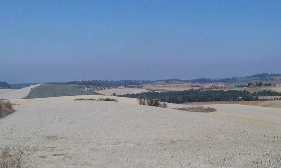 Anello delle colline Lorenzana-Orciano Pisano