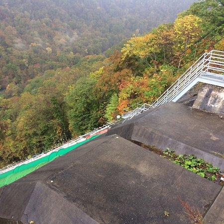 Ojiseishi Chitose Power Plant 1