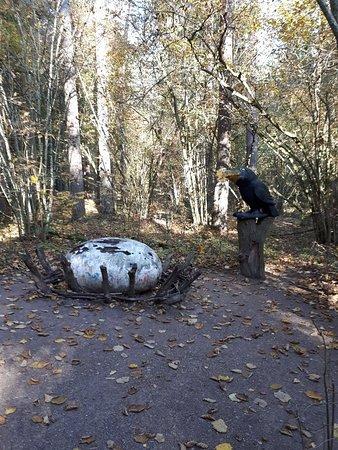 Tervete, لاتفيا: 20181013_123512_large.jpg