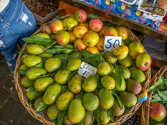 Taste Buddies: Mangos in season at the market