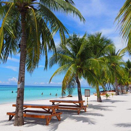 photo0 jpg picture of bohol beach club panglao island tripadvisor rh tripadvisor com au