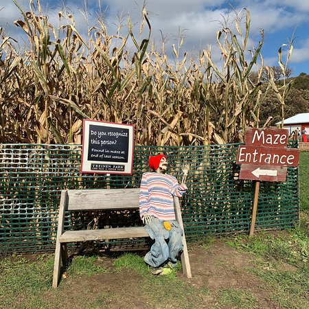 Treinen Farm: photo6.jpg