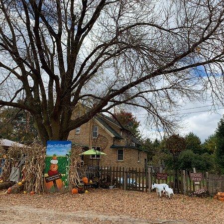 Treinen Farm: photo9.jpg