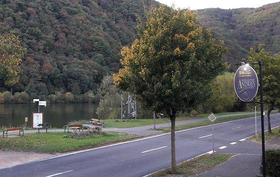 Mesenich, Tyskland: Blick auf die Mosel