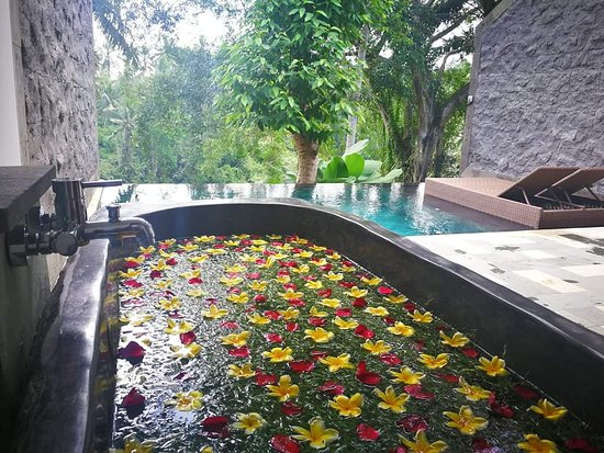 20181009 182744 large jpg picture of bucu view resort ubud rh tripadvisor com au