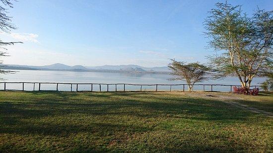 Lake Elementaita, Kenya: DSC_0354_large.jpg