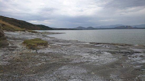 Lake Elementaita, Kenya: DSC_0347_large.jpg