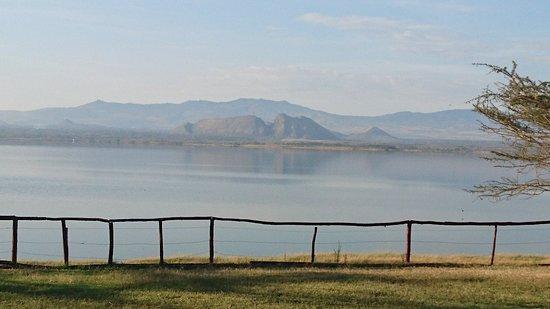 Lake Elementaita, Kenya: DSC_0355_large.jpg