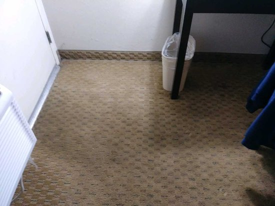 Springfield - Delaware County, PA: Stained Carpet