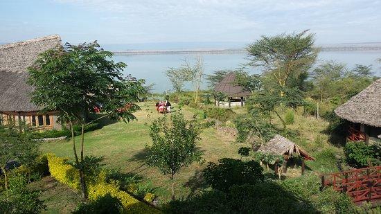 Gilgil, Kenya: Vista desde la habitación