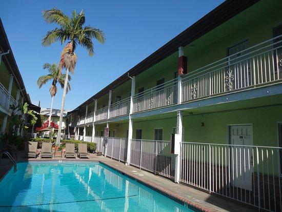 Coral Sands Motel : La piscine