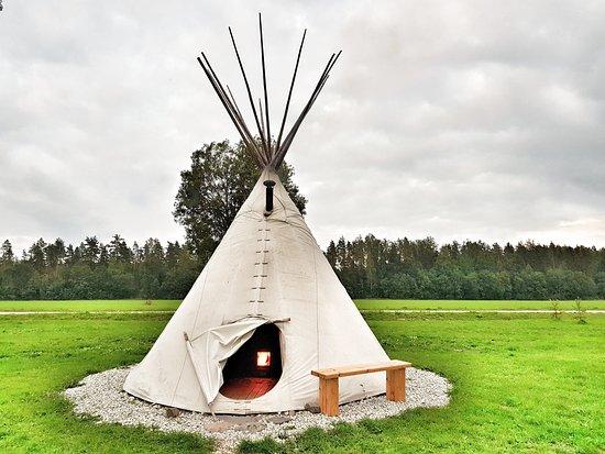 Comté de Parnu, Estonie: Sauna