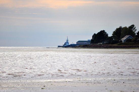 Clark's Sunny Isle Motel: View from the beach
