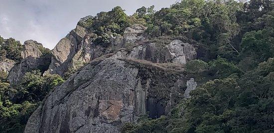 Conexão Gonçalves