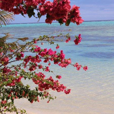 Hauru, Franska Polynesien: photo2.jpg