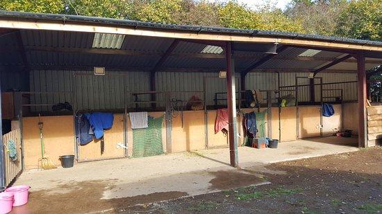 Felindre, UK: top stables