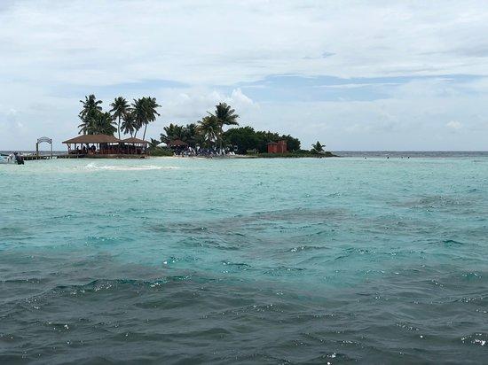 伯利兹珊瑚礁照片