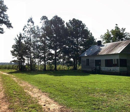 Carvers Creek State Park: historic building