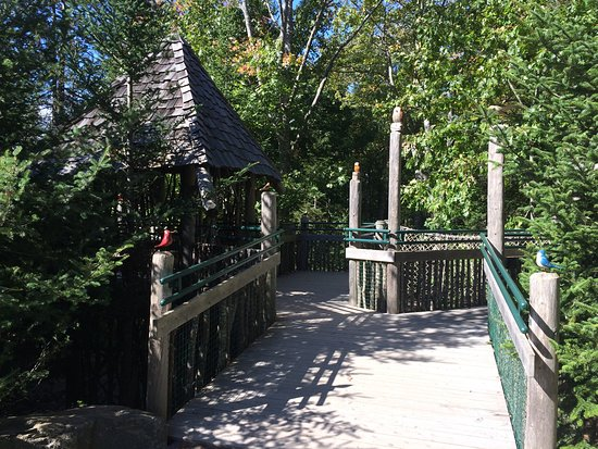 Coastal Maine Botanical Gardens: a woodland area where visitors can learn about birds