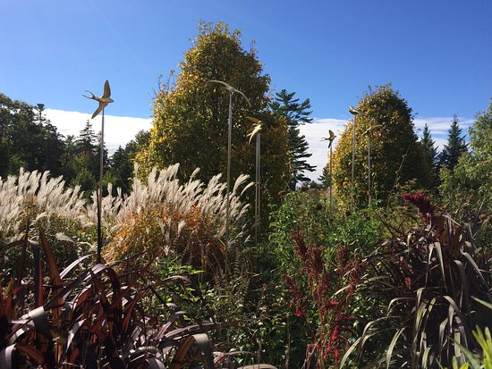 Coastal Maine Botanical Gardens: Swallow sculptures