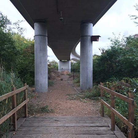 Bow Creek Ecology Park