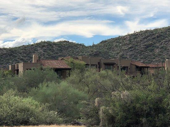 Landscape - The Ritz-Carlton, Dove Mountain Photo