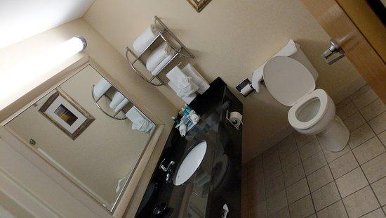 Carneys Point, NJ: Bathroom