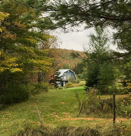 Margaree Forks, Canada: Old Miller Trout Farm