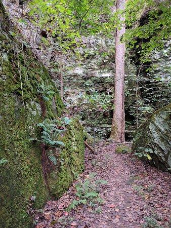 Goreville, Илинойс: Passageway on the Round Bluff Trail