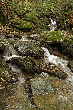 Richmond, MA : Cascades in Lenox Mountain Brook, below Stevens Glen.