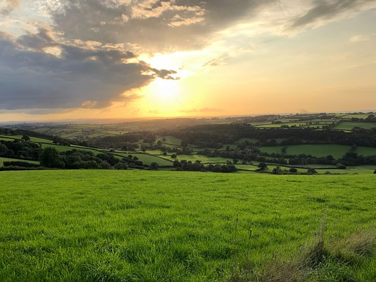 Lewdown, UK: Some great places to watch the sunset (saw a huuuuge fox near here too!)