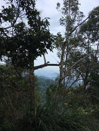 Zdjęcie Hulu Langat District