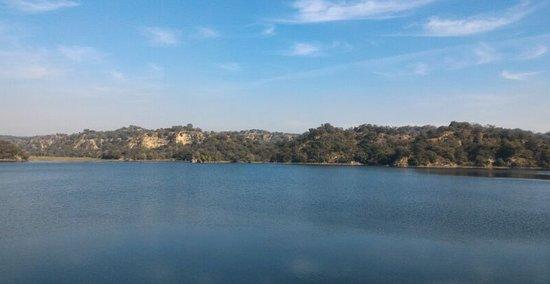 Hoshiarpur, الهند: Damsal Dam waters