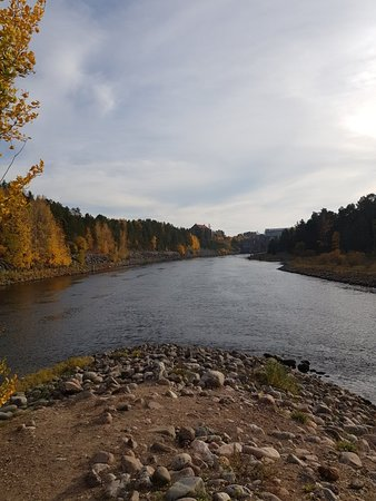 Alvkarleby, Swedia: 20181013_151132_large.jpg