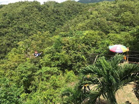 Loboc Ecotourism Adventure Park: Zip line fun.