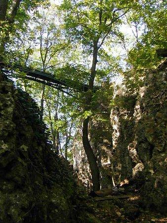 Heubach, Deutschland: Waldbrücke