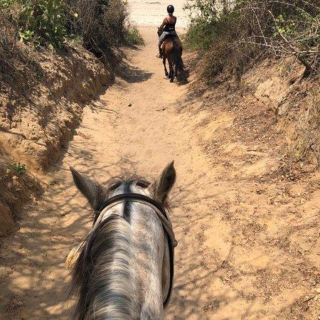 Mozambique Horse Safari: photo1.jpg
