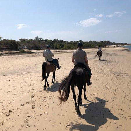 Mozambique Horse Safari: photo2.jpg