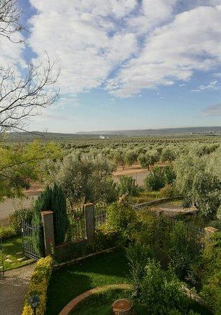 Marmolejo, España: IMG_20181015_102536_large.jpg