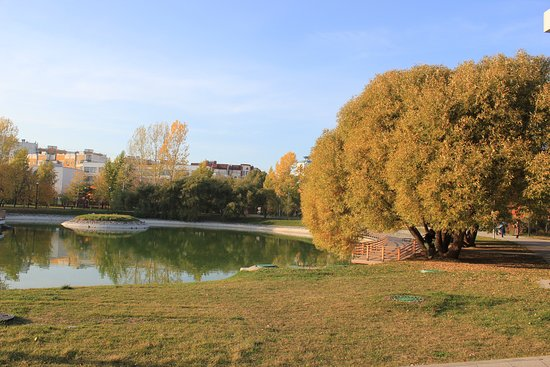 Bratislavskiy Park