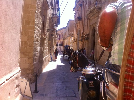 Mdina Old City: Horse & carriage in the old city