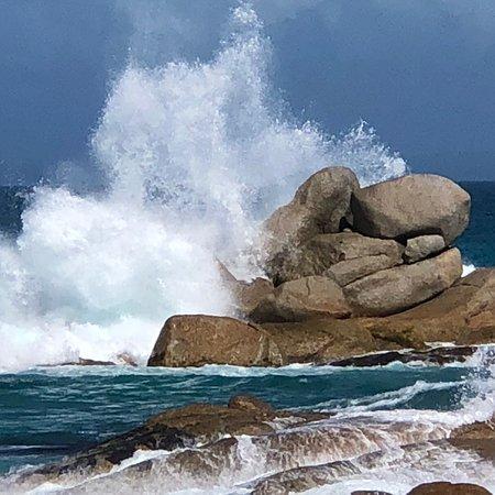 Binalong Bay, ออสเตรเลีย: photo2.jpg